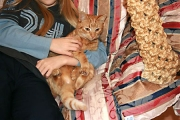 Mika-umarmt-kuscheln