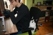 süßes_Katzenmädchen_Mitzi